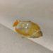 ほっともっとの目玉焼きの表面のビニールのような硬い膜の写真